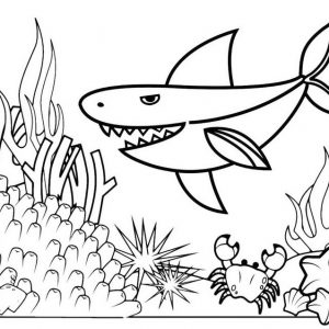 Baby Shark and Coral Reefs Coloring Page