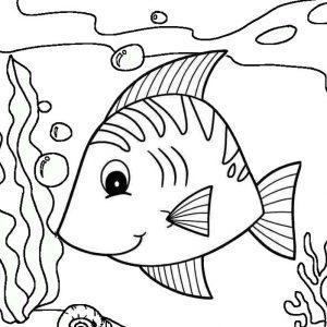 Beautiful Ocean Fish Coloring Pages