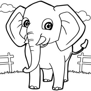 Top Ten Cute And Simple Elephant Coloring Pages Mitraland