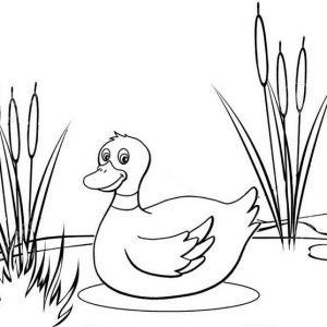 Mommy Duck Coloring Page