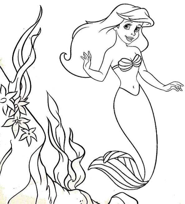 Beautiful Manatee Swimming Around The Coral Reef Coloring Page Copy Mitraland