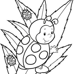 Baby Ladybug Cartoon Coloring Sheet