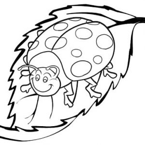 Ladybug cartoon attract leaf of garden coloring sheet