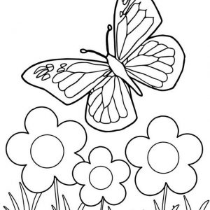 Monarch Butterfly coloring page for girls