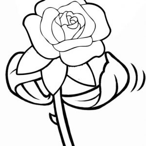 Rose silk coloring page from Nindy