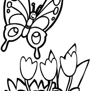 Simple Butterfly and Flower Coloring Page from Sanaz