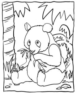 Cute Baby Panda Eating Bamboo Coloring Sheet