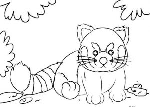 Cute and Simple Red Panda Coloring Sheet