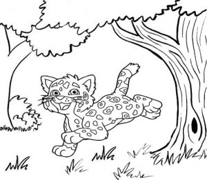 Jaguar Jumping Coloring Sheet