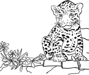 Jaguar Sitting Coloring Page