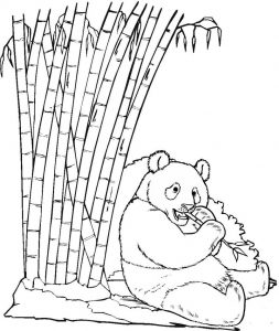 Panda Sitting and Eating Bamboo Coloring Page