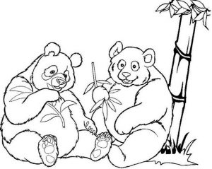 Sweet and Funny Two Pandas Coloring Page