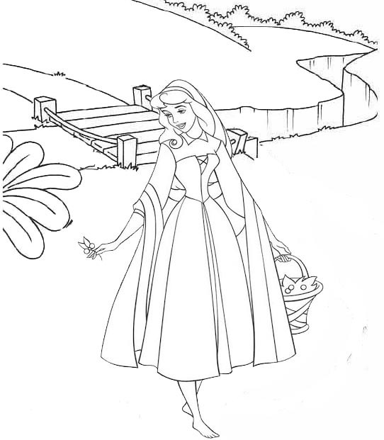 Princess Aurora Loves Christmas coloring page | Free Printable ... | 621x542