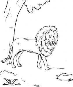 Awesome Lion Coloring Page Picture for kids