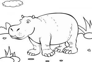 Best Hippo Grass Coloring Sheet