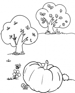 Crazy Easy Pumpkin Coloring Sheet to make this fall