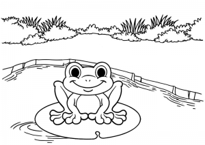 Frog Amphibian Coloring Sheet