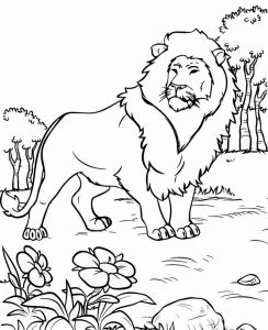Great Lion Coloring Sheet for All Ages
