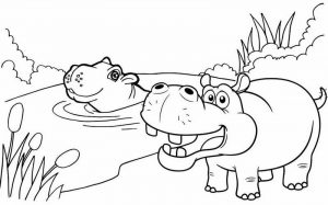 Hippo in swamp coloring page for kids