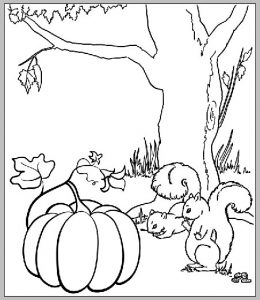 Pumpkin and squirrel coloring page