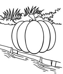 Pumpkin at river side coloring page
