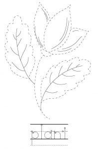 Plant Name Tracing Worksheet